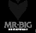 Mr. Big Hungary